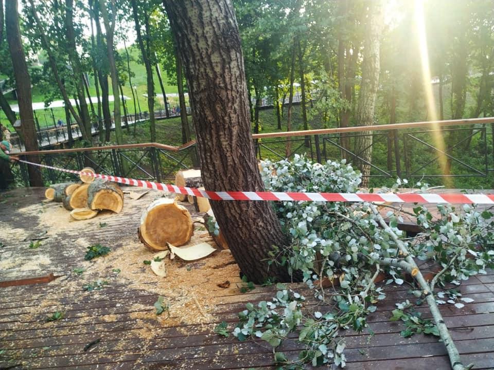 Поваленные из-за грозы деревья повредили перила на Аллее художников в Киеве (ФОТО)
