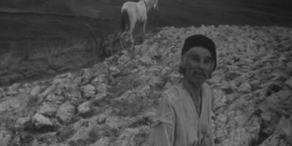 Кияни безкоштовно побачать культовий український фільм