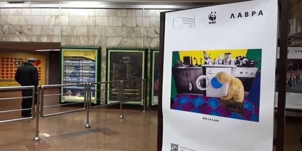 На станції київського метро показують мистецтво з важливим сенсом