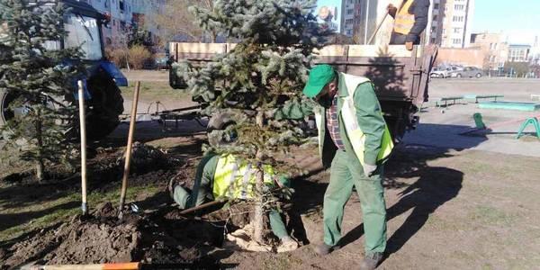 У Києві попри карантин всюди садять дерева