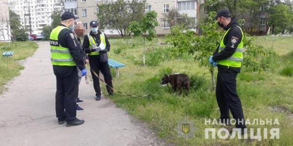 Штрафи за собак: як кияни реагують на дії поліції