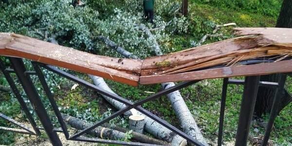 У Києві дерева поламали Алею художників